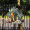 Bird Feeder Hanging Clear Glass Window Viewing Bird Feed Outdoor Hanging Suction